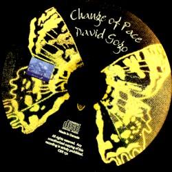David Gogo - For You