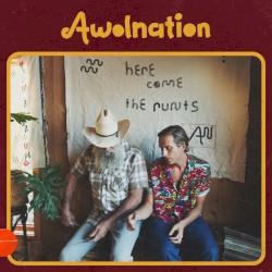 AWOLNATION - The Buffoon